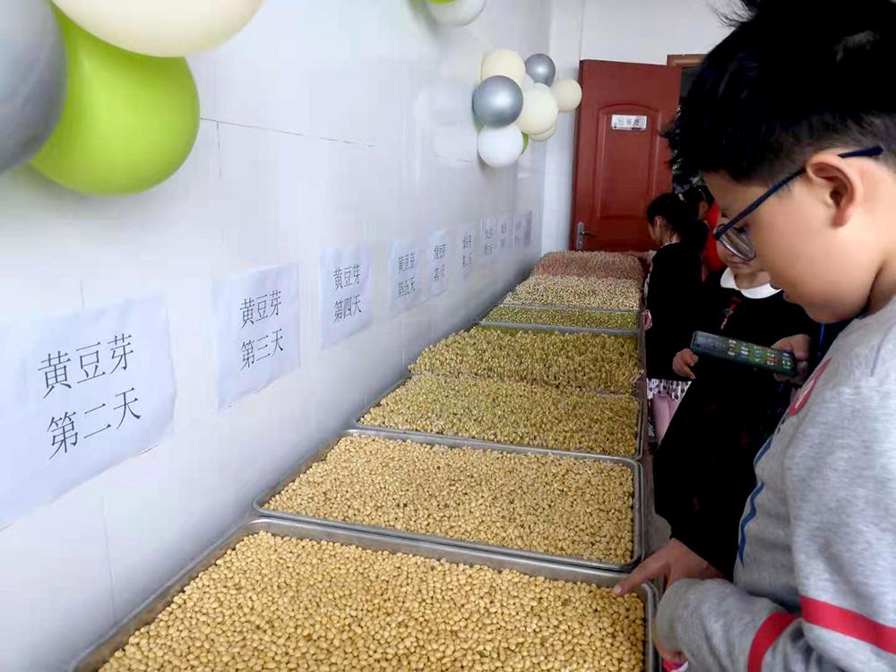 3000 李阳拍 磨豆腐21.jpg